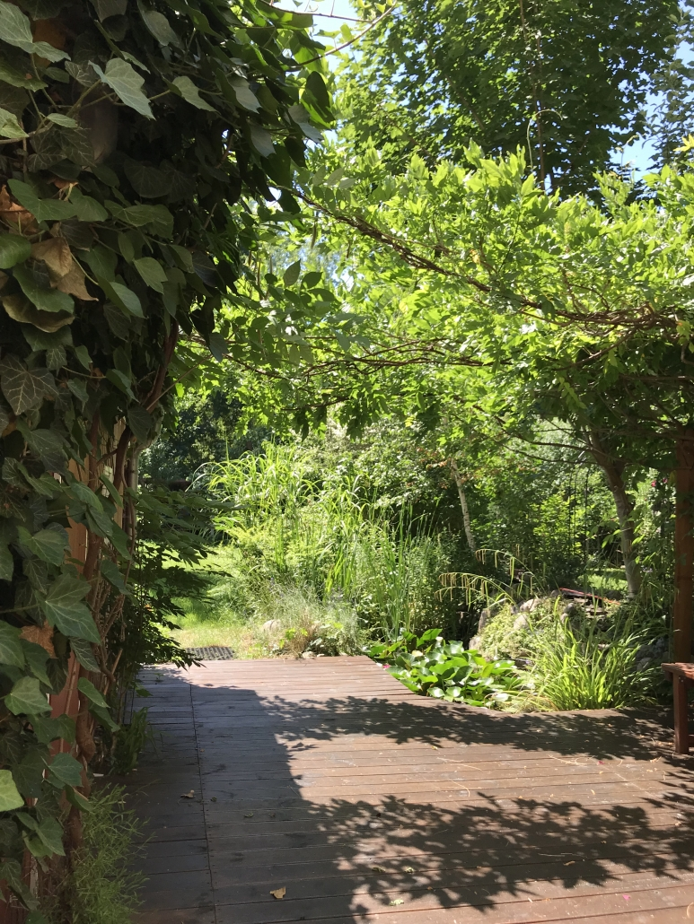 Garten der voll möblierten Wohnung in Berlin Köpenick
